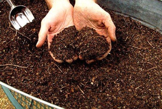 органическое удобрение из торфа